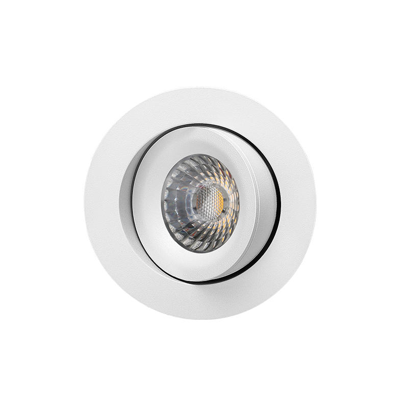 Patented Design 360 Allround Gyro Tilt 9W downlight(Lens)
