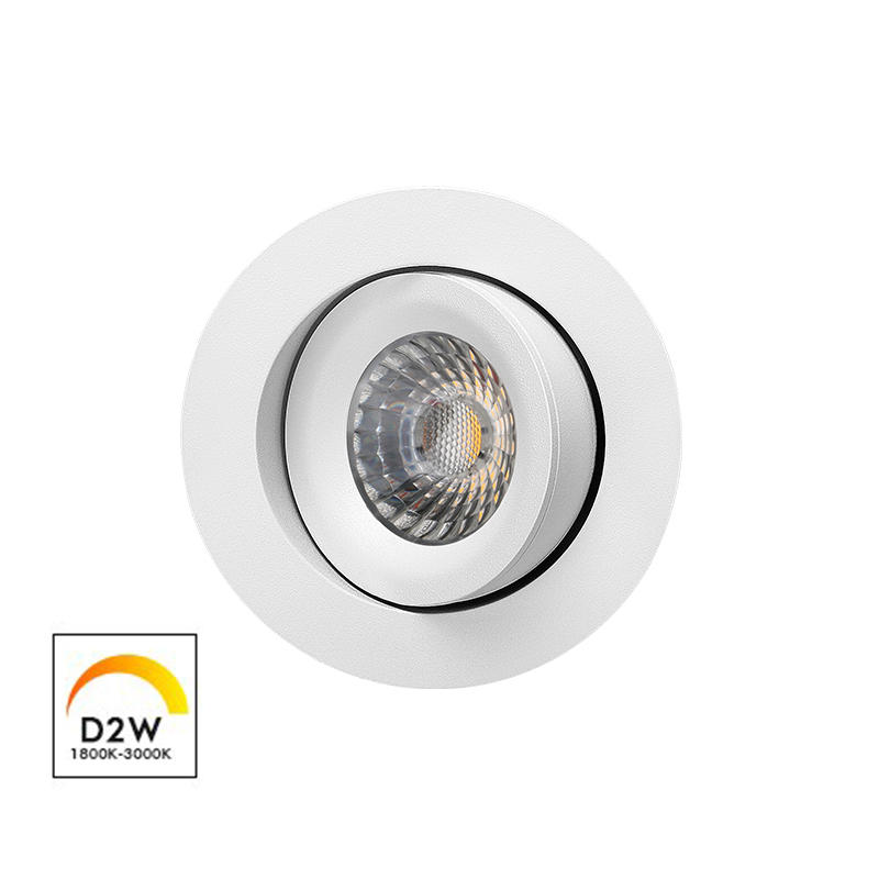 Patented Design 360 Allround Gyro Tilt Dim-to-warm 9W downlight(Lens)