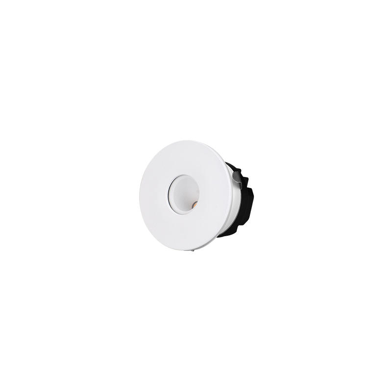 Asymmetric Wallwasher 5W LED Downlight